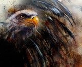 painting  eagle on an abstract background, USA Symbols Freedom  Zwierzęta Plakat
