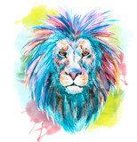 Watercolor vector lion Zwierzęta Plakat