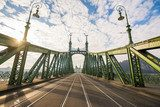 beautiful liberty bridge at budapest, hungary Industrialne Fototapeta