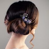 Bridal or Prom Hairstyle. Beautiful Woman with Brown Hair and Hairdeco, Back View Obrazy do Salonu Fryzjerskiego Obraz