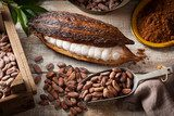 Cocoa beans and pod Obrazy do Jadalni Obraz