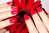 Beauty hands with red fashion manicure and bright flower. Beautiful manicured red polish on nails Obrazy do Salonu Kosmetycznego Obraz