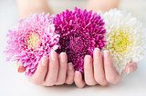 Woman cupped hands with beautiful French manicure holding pink and white flowers Obrazy do Salonu Kosmetycznego Obraz