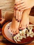 female feet at spa salon on pedicure procedure  Kwiaty Plakat