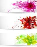 Set of three color vector background or card  Kwiaty Plakat