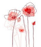 Red poppies on white background. Vector illustration  Kwiaty Plakat