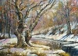 Winter landscape with wood and the river  Olejne Obraz