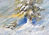 Fir-tree in snow. A picture drawn by oil  Olejne Obraz