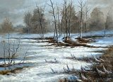 Bog cloudy, winter day  Olejne Obraz