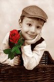 vintage portrait of elegant little boy with red rosa  Fototapety Sepia Fototapeta