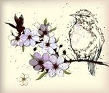 little bird and blooming branch  Draw Flower Fototapeta