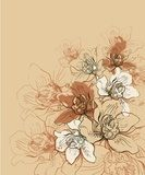 vector background with   hand drawn orchids  Draw Flower Fototapeta