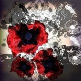 glittering poppies on a lace background  Draw Flower Fototapeta