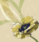 vector  background with a single yellow poppy  Draw Flower Fototapeta