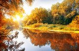 River in a delightful autumn forest  Krajobraz Fototapeta