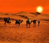 The Berbesky tribe passes the desert in Africa  Krajobraz Fototapeta