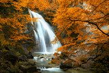 Beautiful Waterfall. Autumn  Krajobraz Fototapeta