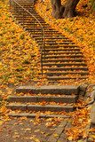 Stairs filled with colourful autumn leaves  Schody Fototapeta