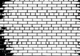 Grunge white and black brick wall background  Mur Fototapeta