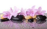Pink flowers and black stones  Obrazy do Salonu SPA Obraz