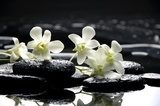 Zen stones and white orchids with reflection  Obrazy do Salonu SPA Obraz