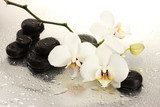 Spa stones and orchid flowers, isolated on white.  Kwiaty Obraz