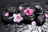 Spa stones with drops and pink sakura flowers  Kwiaty Obraz