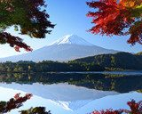 Mt. Fuji in the Autumn from Lake Kawaguchi, Japan  Krajobrazy Obraz