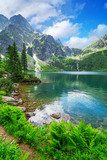 Eye of the Sea lake in Tatra mountains, Poland  Krajobrazy Obraz