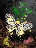abstract background with butterflies  Fototapety do Kawiarni Fototapeta