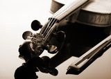 Violin and bow on dark background  Muzyka Obraz