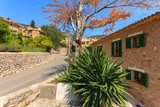 Road and houses on street of Fornalutx village, Majorca island  Uliczki Fototapeta
