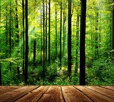Fresh green forest with sunbeams and wooden floor  Las Fototapeta