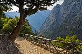 Trail through Samaria gorge, island of Crete  Las Fototapeta