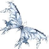 Water splash butterfly 2  Motyle Fototapeta