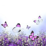 Flowers in a bouquet, blue hydrangeas and butterfly  Motyle Fototapeta