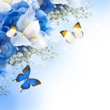 Flowers and butterfly, blue hydrangeas and white irises  Motyle Fototapeta