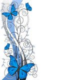 floral illustration with butterflies  Motyle Fototapeta