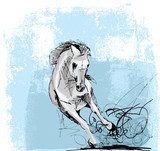 Sketch of white horse running  Drawn Sketch Fototapeta
