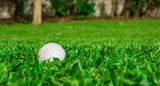 golf ball on grass  Sport Fototapeta