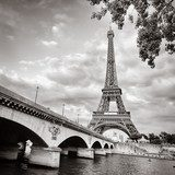 Eiffel tower view from Seine river square format Plakaty do Salonu Plakat