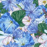 Beautiful seamless floral pattern  Kwiaty Fototapeta