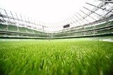 green-cut grass in large stadium at summer day  Stadion Fototapeta