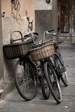Italian old-style bicycles in Lucca, Tuscany Salon Plakat
