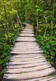 Pathway in Plitvice lakes park at Croatia  Schody Fototapeta