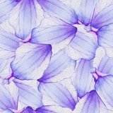 Watercolor Seamless pattern with Purple flower petal Fototapety do Pokoju Dziewczynki Fototapeta