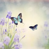 Flowers and Butterflies Motyle Fototapeta