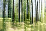 forest vertical motion blur Fototapety do Sypialni Fototapeta