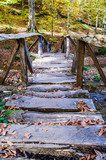 wooden bridge in forest during autumn  Schody Fototapeta