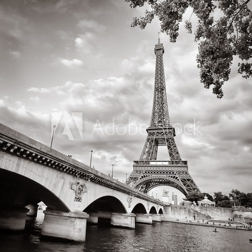 Eiffel tower view from Seine river square format  Architektura Plakat
